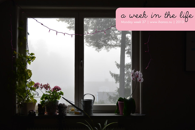 Week in the Life | Misty Monday Morning