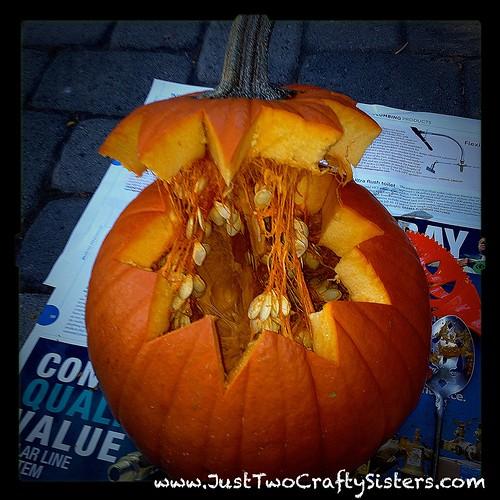 Zig-zag pumpkin top