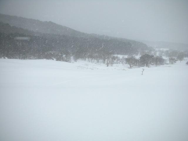 扇谷上からの景色.やっぱり雪が強い.