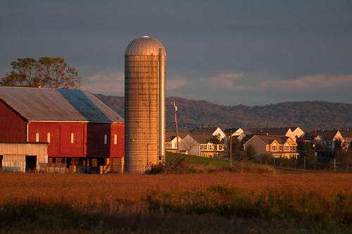 houses field barn sunrise photo day suburban cloudy farm maryland silo decor adamstown