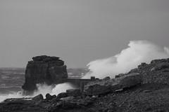 Dorset 2014