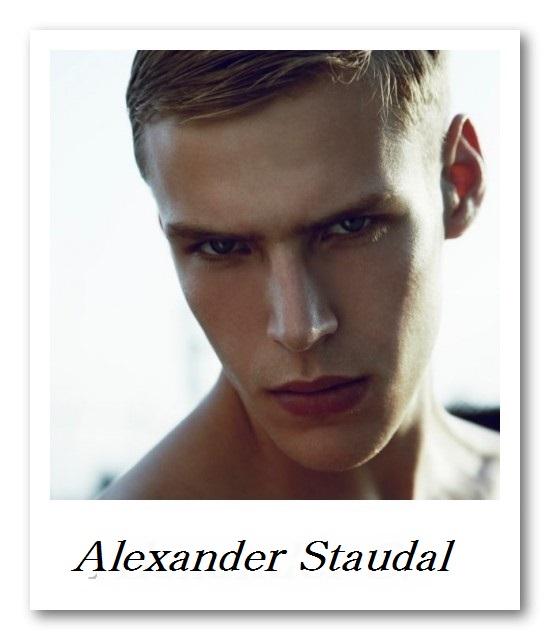 BRAVO_Alexander Staudal