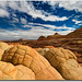 North Coyote Buttes Brainrock Garden by Robin-Wilson