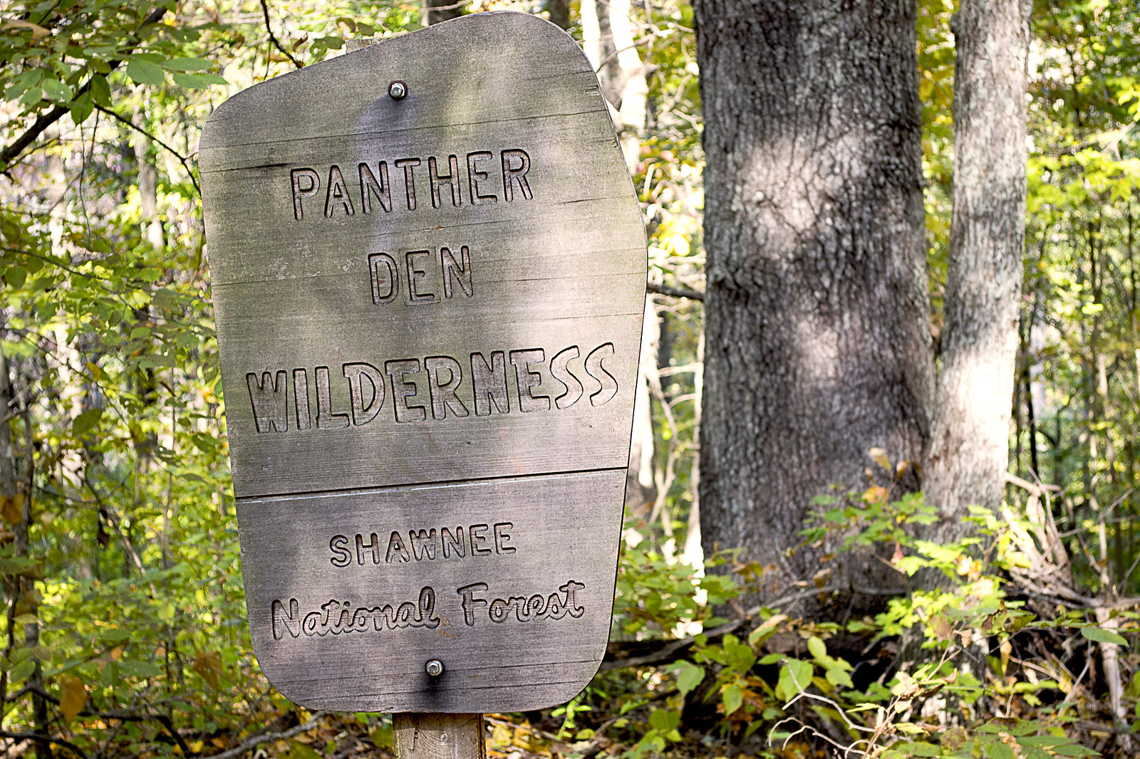 Local Treks: Panther Den Wilderness Boundry Sign