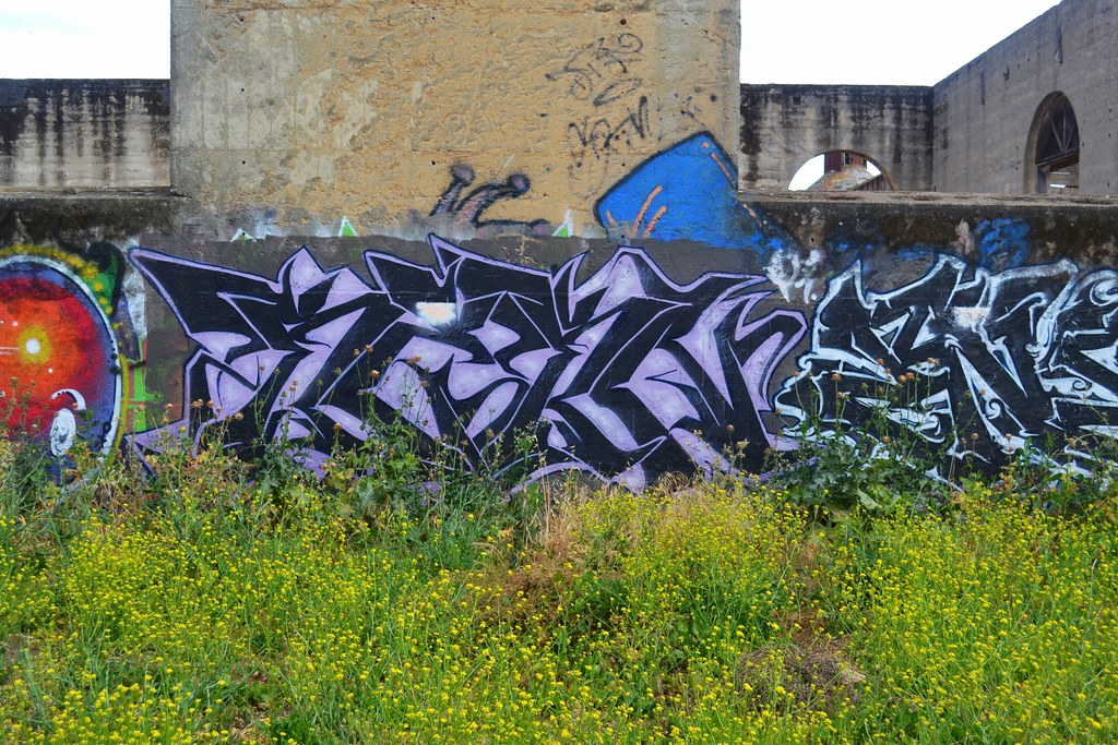 REKN, PI, TFN, Graffiti, the yard, northbay