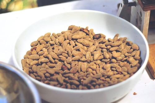 cacao-beans-theo-and-philo-artisan-chocolates-gawad-kalinga-enchanted-farm