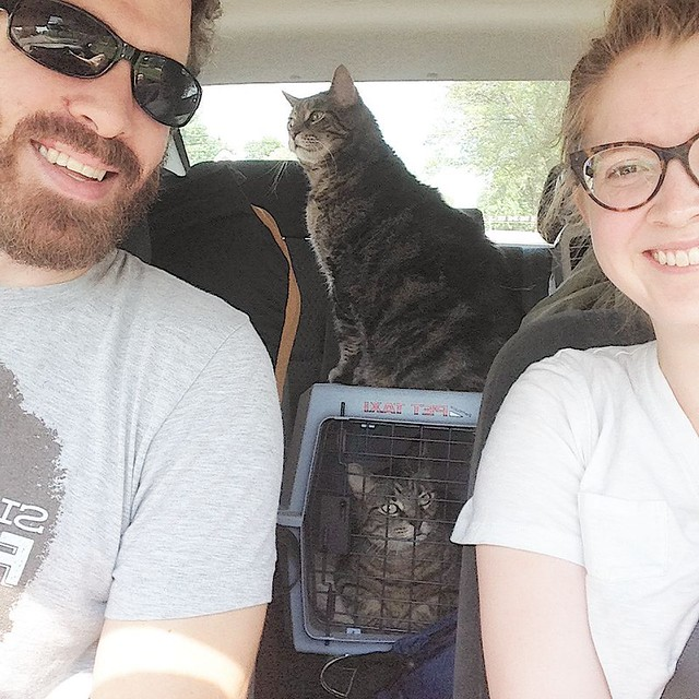 Dodgeville -> Oshkosh   Closing on our new house in a few hours. Thanks to Nate's parents for babysitting the 'grandcats' for the last week!