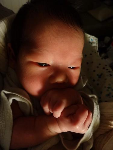 深夜に瞑想に耽る新生児。世界平和とか祈ってそうです。