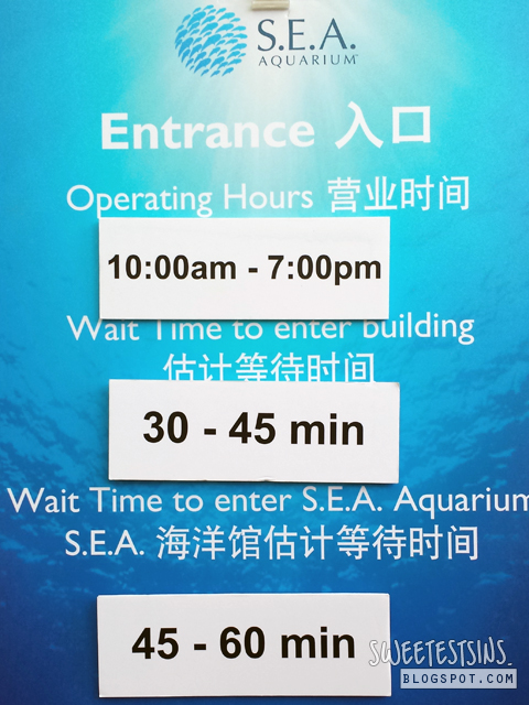 waiting time to enter sea aquarium