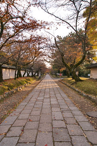 【写真】2012 紅葉 : 醍醐寺/2020-08-07/IMGP6877