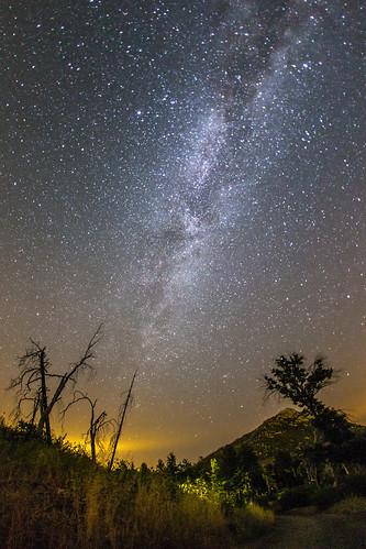 california sky mountain tree landscape julian unitedstates sandiego nighttime burnt nightsky milkyway vialactea