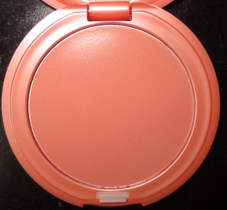 Stila Convertible Color in Gerbera