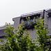 Girasoles en el balcon