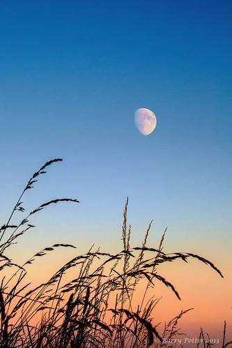 sunset nature nikon yorkshire pocklington barrypotter yabbadabbadoo nikond90 barrypotternet nikkor28mm300mm3556ed edenmedia barrypotteredenmedia