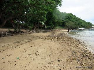 malcapuya-island-coron.jpg
