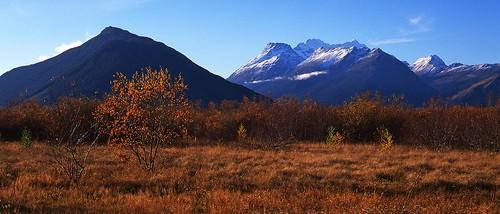Glenorchy Autumn NZ