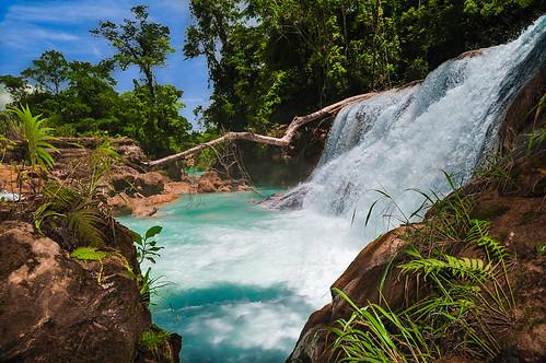 Cascadas de Agua Azul (43)