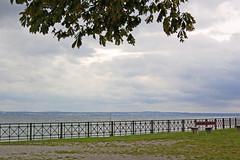 Blick auf den verregneten Bodensee