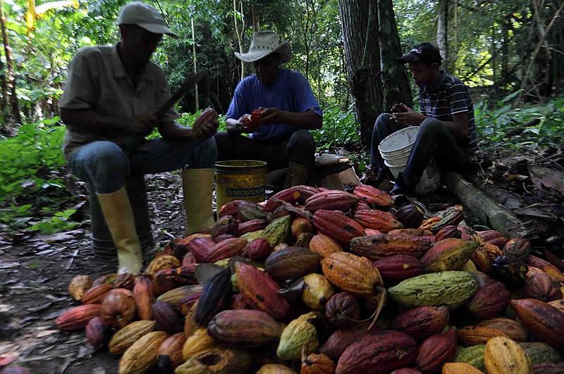 (6)VENEZUELA-CARABOBO-INDUSTRIA-AGRICULTURA