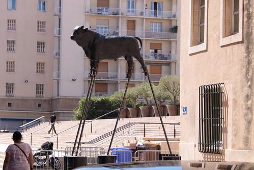 Marseille 082 Stier