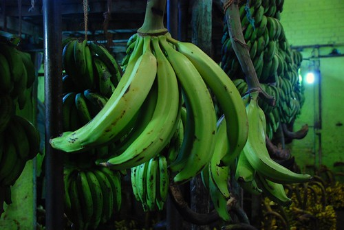 bananas 2, Colombo
