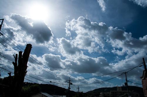 2013/09/16 京都市 台風18号
