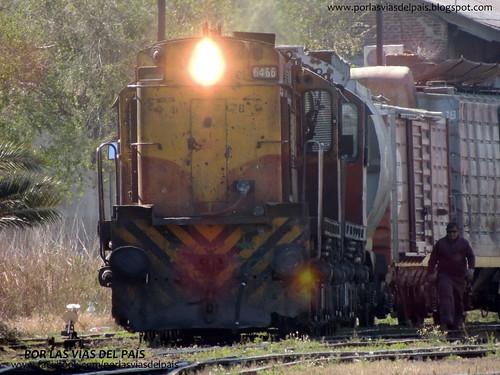 ALCO RSD35 6466-6437