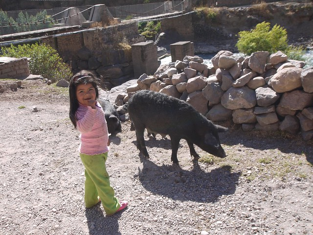 日, 2013-08-18 16:46 - Inca Bridge前の女の子と豚