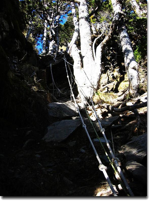 垂直攀岩區 1