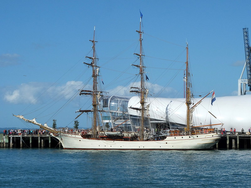 Bark Europa in Auckland