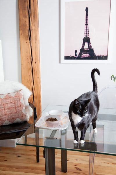 nicolette mason INTERIORS Inside My Home with  : 110034999352ba73921a1z from www.nicolettemason.com size 333 x 500 jpeg 72kB