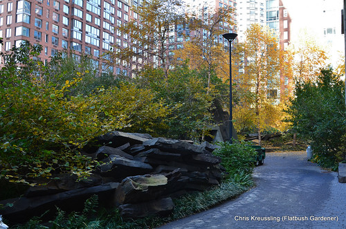 Teardrop Park, NYC (by: Chris Kreussling, creative commons)