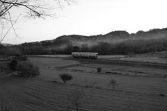 The train which runs through a local railroad