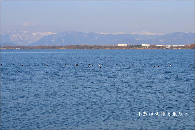 琵琶湖-83