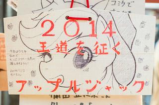 20140104-DSC_0721