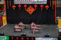 Edmonton Chinese New Year 2014