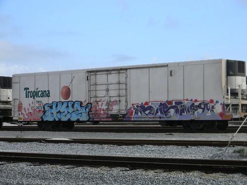 DSCN3255