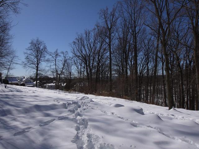 月, 2014-02-17 12:08 - Douglas Park