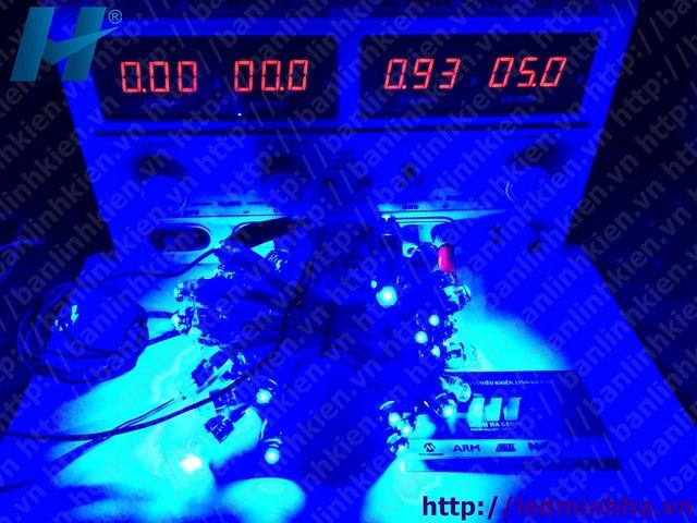 LED Đúc Phi 8 Đế 12 Xanh Dương