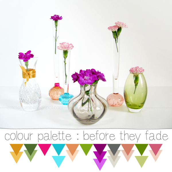 colour palette : before they fade | Emma Lamb