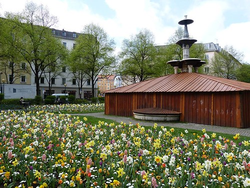 Munich and the flowers