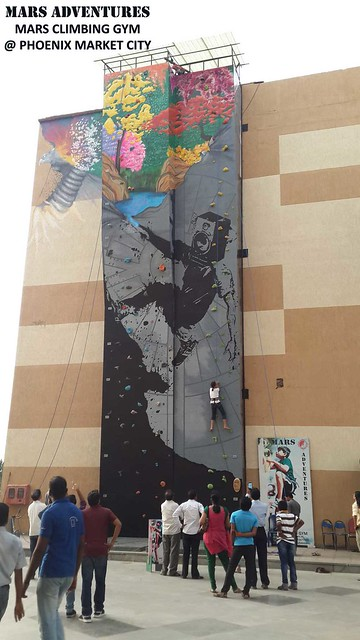 Phoenix-Climbing-Wall-Public-Art-Project-6