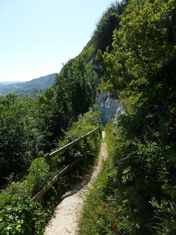 The short cut path to the Cliff Top Cafe Folkestone Circular walk