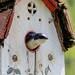 Oiseau dans le jardin des Lilas à Bécancour