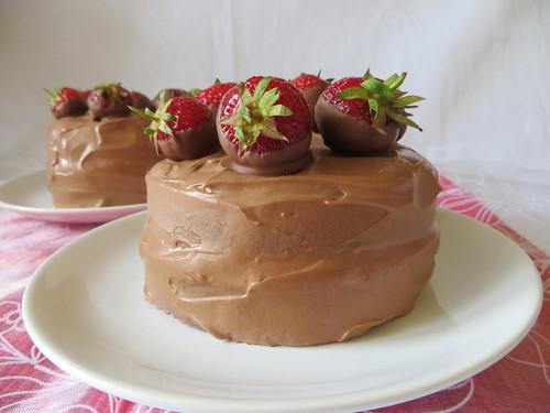 schoko-erdbeer (11)