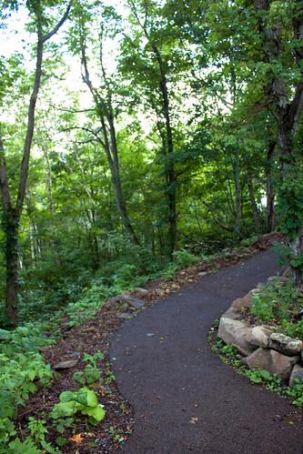 藻岩山 自然学習歩道