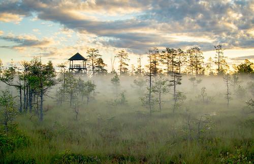 morning tower fog sunrise sightseeing latvia moorland cenastīrelis sonya58