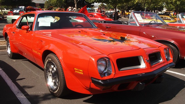 1974 Pontiac Firebird Trans Am 2