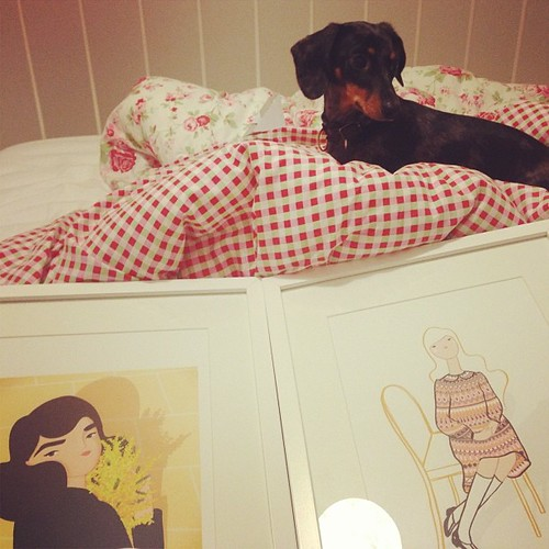 #lolathesausage is helping me frame some @krisatomic prints for the spare bedroom :)