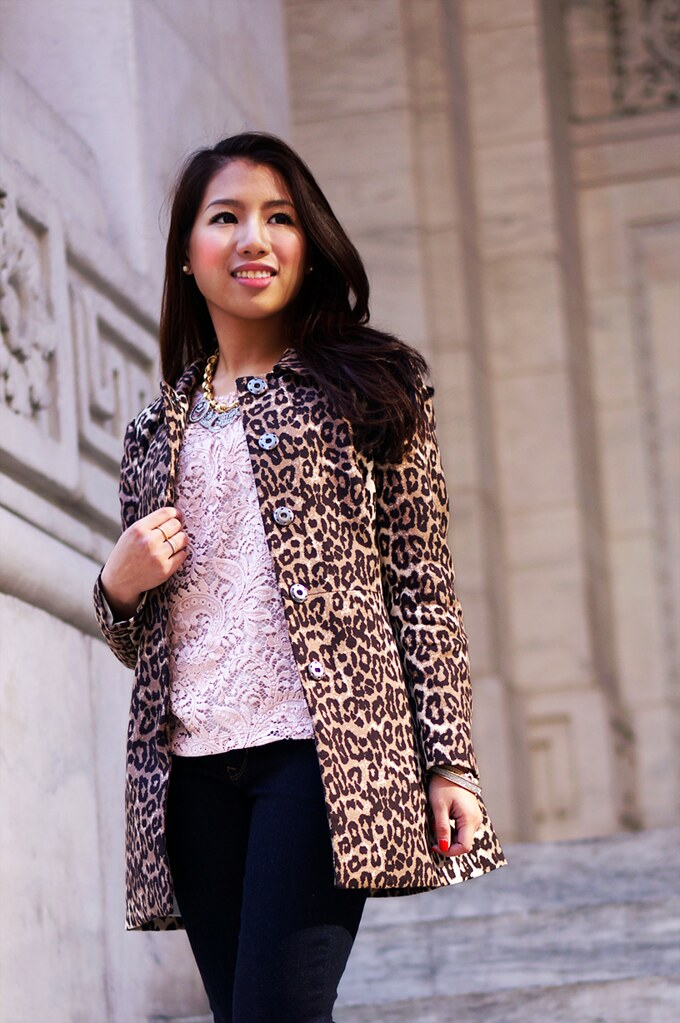petite hues, banana republic, leopard jacket, loft, lace top